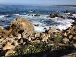 Beach Pic 2