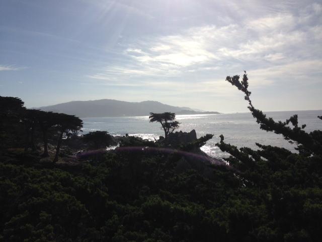Beach Pic 4